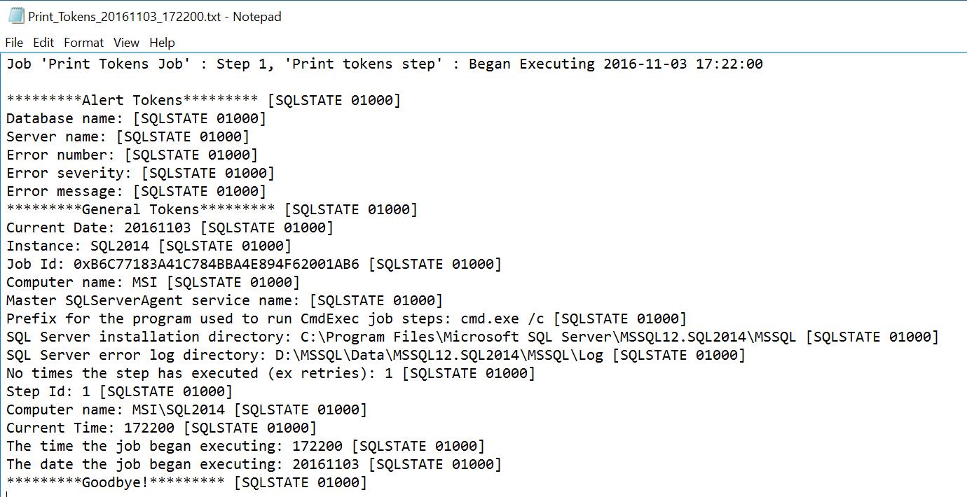 SQL Server Agent log file